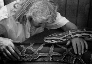 Linda tellington jones performs ttouch on a python named joyce