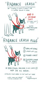 Tellington TTouch Balance Leash as drawn by Lili Chin